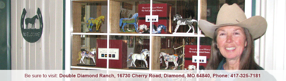 The Trail of Painted Ponies Retailers
